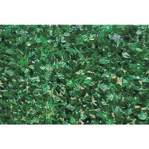 arella siepe doppia schermatura foglie di lauroarella siepe doppia schermatura foglie di lauro