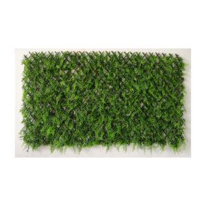 arella con stecca + erba sempreverde